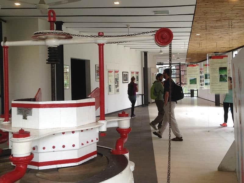 Besøg på BOH-tefabrik i Cameron Highlands i Malaysia