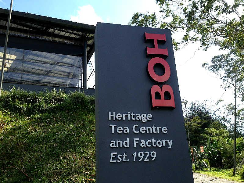 Tefabrikken BOH i Cameron Highlands i Malaysia