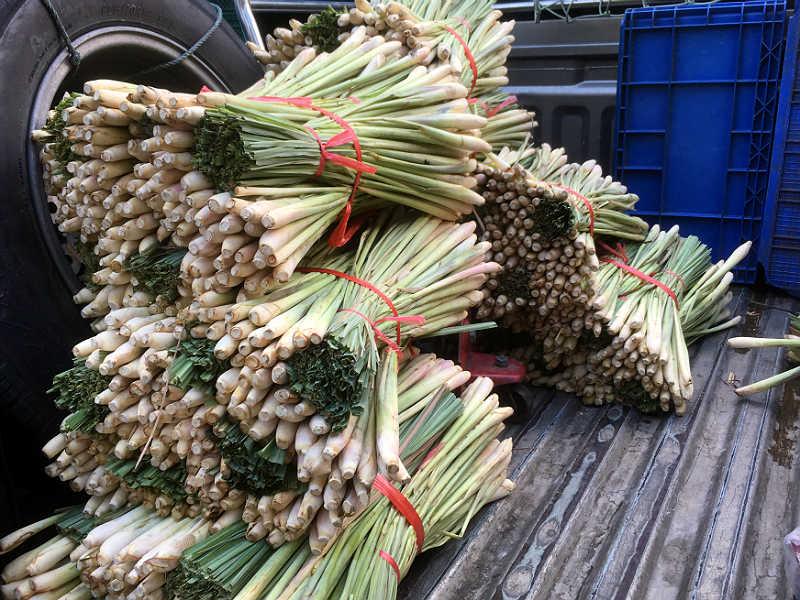 Citrongræs på marked i Bangkok
