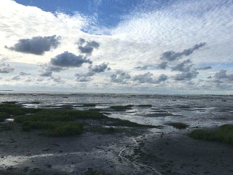 Vadehavet ved Rømø