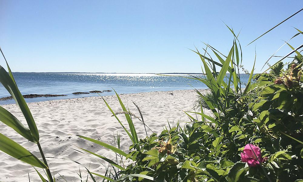 Solskin på strand på Als
