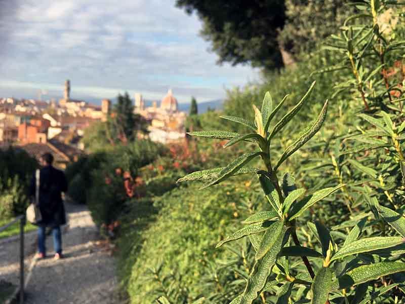 Giardino delle Rose i Firenze