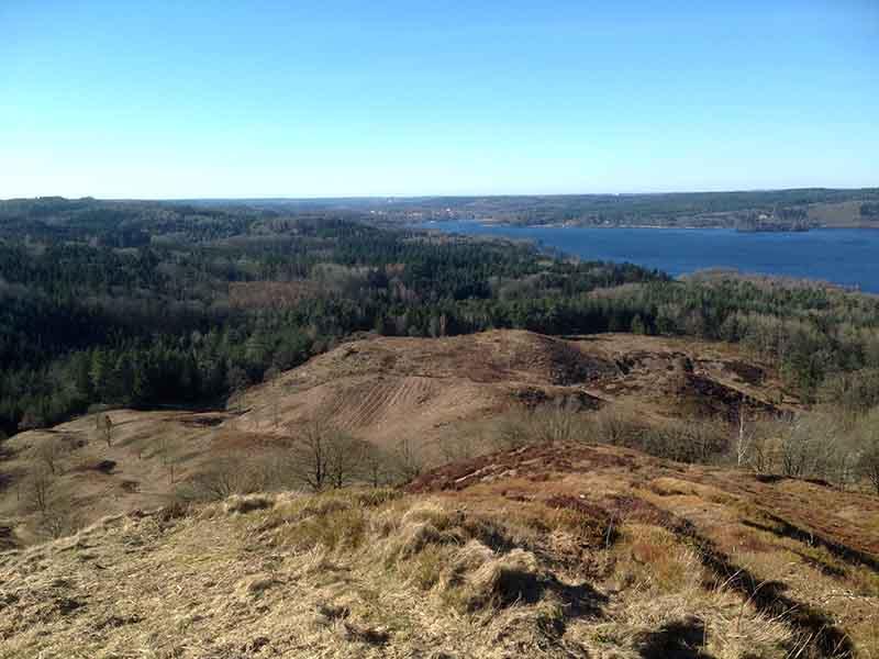 Udsigten over Silkeborgsøerne fra toppen af Himmelbjerget